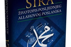 SIRA_____ivotopi_4ca314f1bfa32