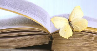 ARE125Butterfly-on-Book-Posters