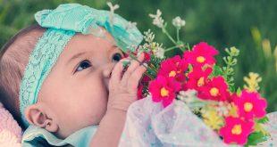 baby-1542911 960 720